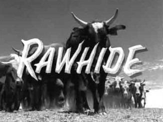 Logo of Rawhide