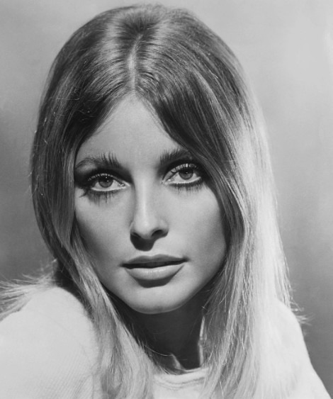photo of the actress Sharon Tate